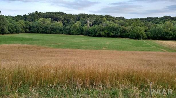 Farms - Germantown Hills, IL (photo 2)