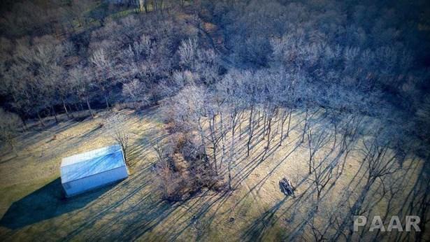 Farms - Germantown Hills, IL (photo 5)