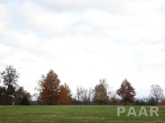 Lots - Elmwood, IL (photo 1)