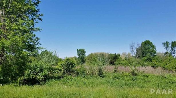 Lots - Dahinda, IL (photo 1)