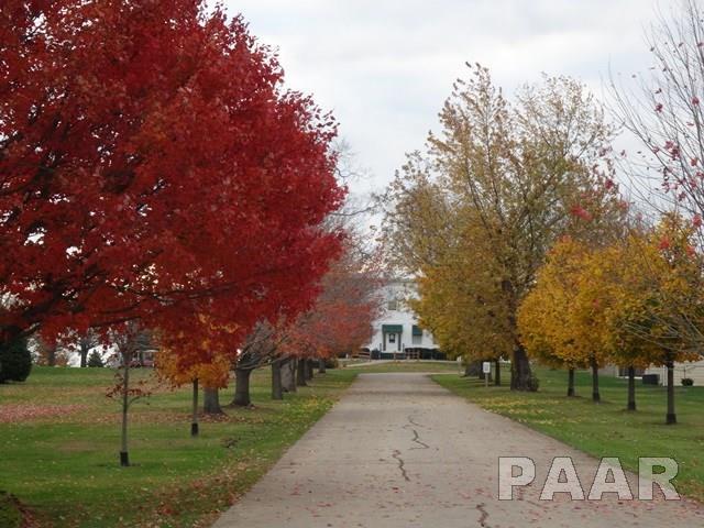 Lots - Elmwood, IL (photo 4)