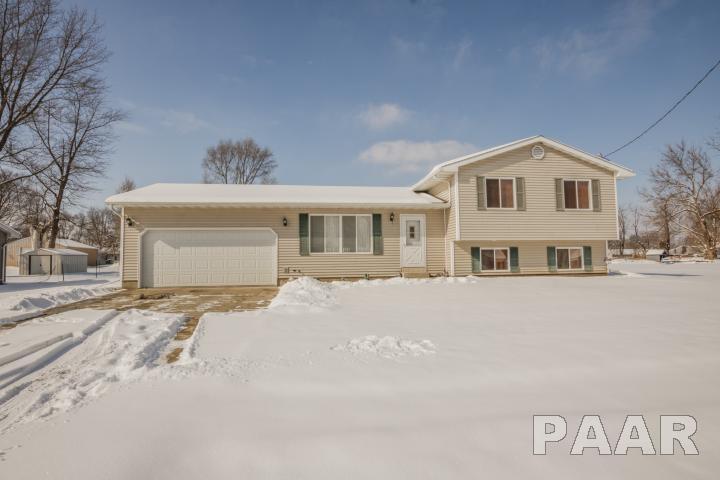 Tri-Level/3-Level, Single Family - Williamsfield, IL (photo 1)
