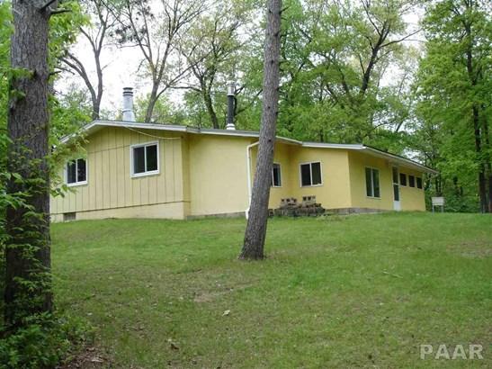 Ranch, Single Family - Havana, IL (photo 3)
