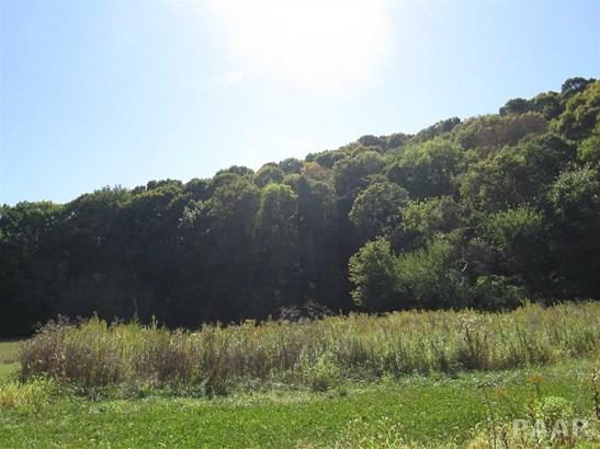 Acres - Metamora, IL (photo 2)
