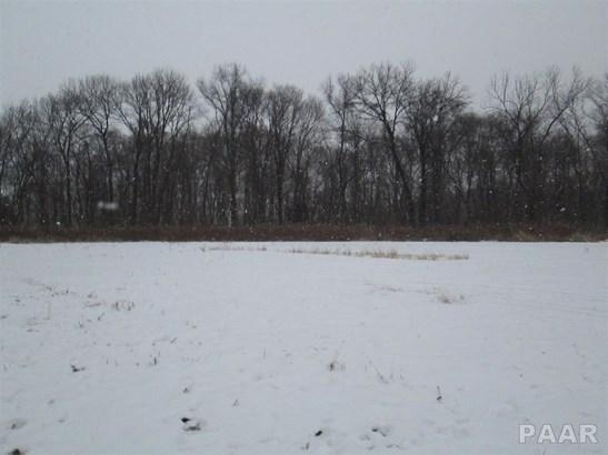 Acres - Metamora, IL (photo 5)