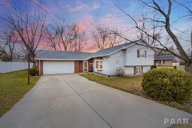 Tri-Level/3-Level, Single Family - Germantown Hills, IL
