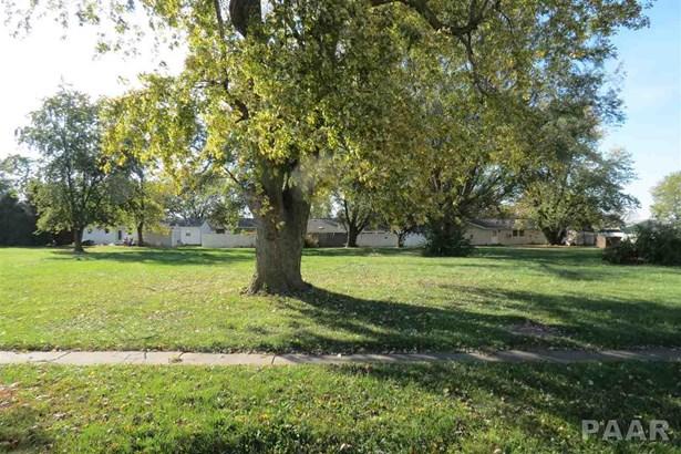 Lots - Brimfield, IL (photo 2)