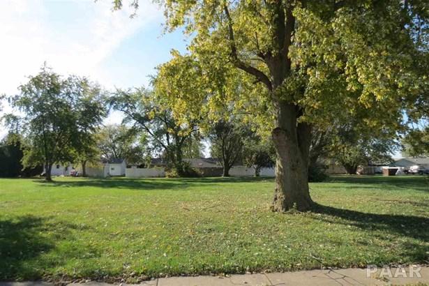 Lots - Brimfield, IL (photo 3)