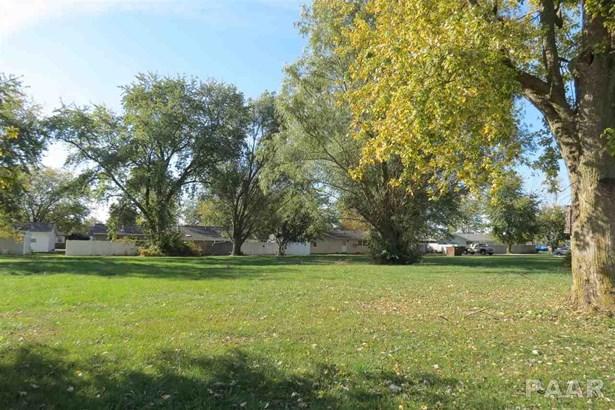 Lots - Brimfield, IL (photo 4)