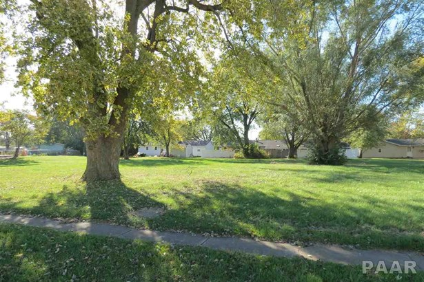 Lots - Brimfield, IL (photo 5)