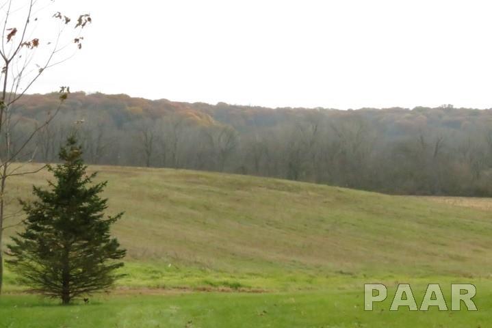 Ranch, Single Family - Brimfield, IL (photo 5)