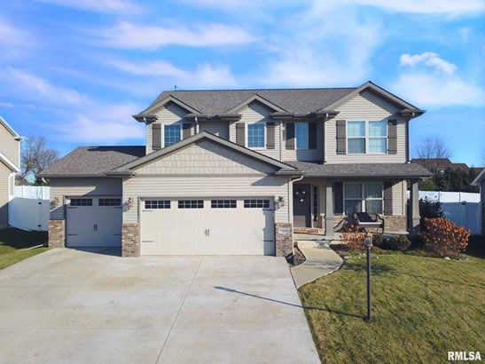 2 Story, Single Family - Edwards, IL