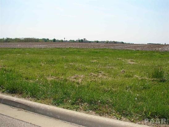 Lots - Goodfield, IL (photo 2)