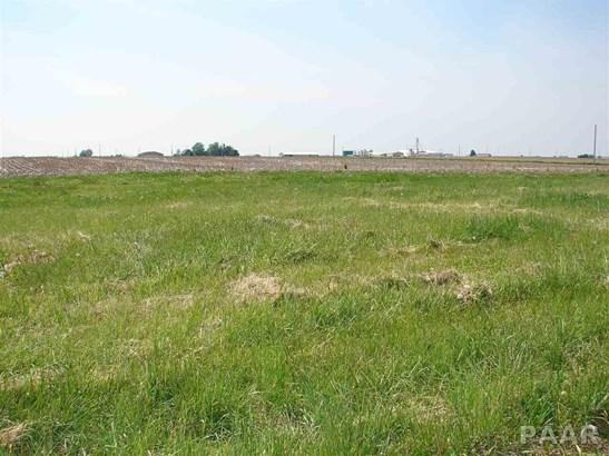 Lots - Goodfield, IL (photo 3)