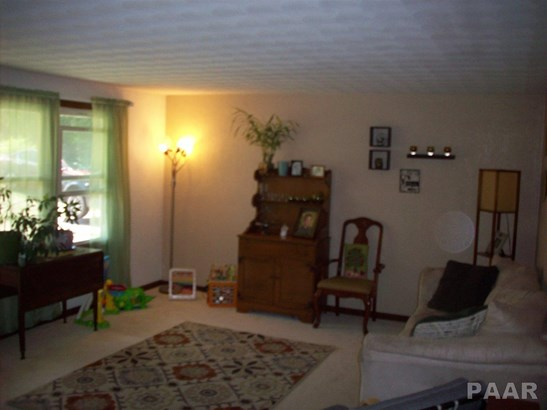 Tri-Level/3-Level, Single Family - Sparland, IL (photo 4)