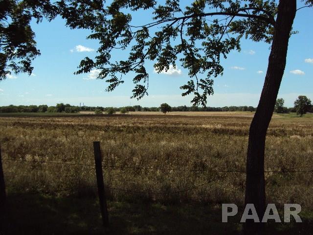 Ranch, Single Family - Bartonville, IL (photo 4)