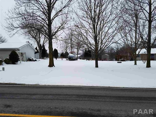 Lots - Mapleton, IL (photo 2)