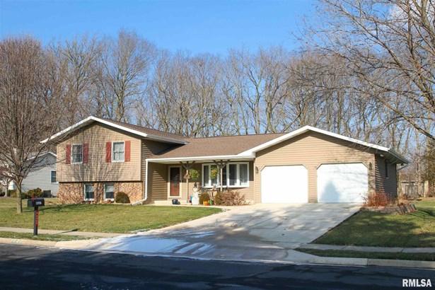 Tri-Level/3-Level, Single Family - Peoria, IL