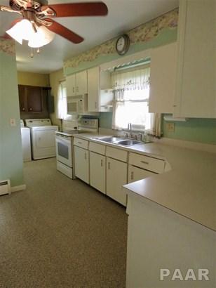 Ranch, Single Family - Roanoke, IL (photo 4)