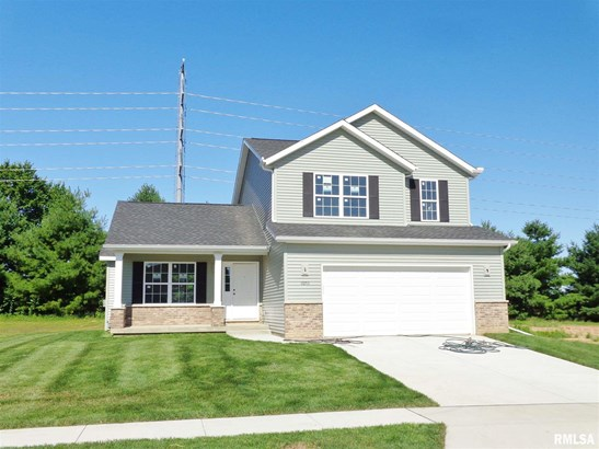 2 Story, Single Family - Dunlap, IL