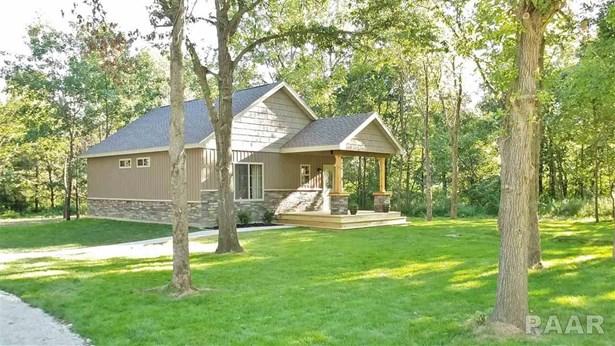 Ranch, Single Family - Dahinda, IL (photo 4)