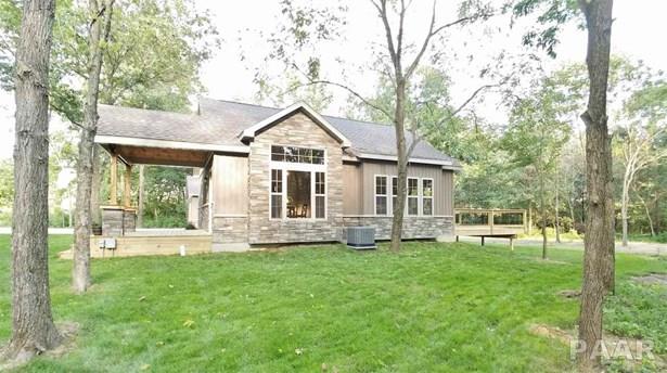 Ranch, Single Family - Dahinda, IL (photo 5)