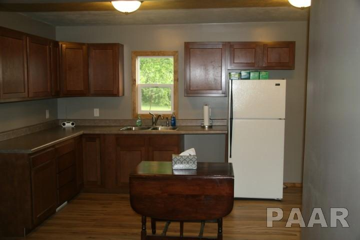 Ranch, Single Family - Forest City, IL (photo 5)