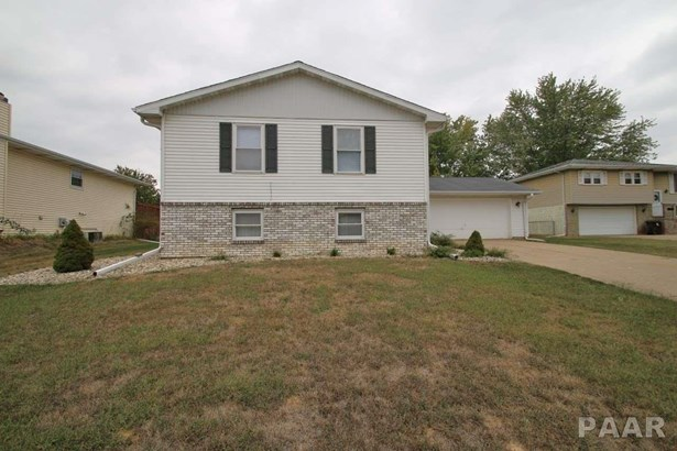 Bi-Level/Side-Split, Single Family - Peoria, IL (photo 5)