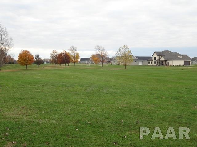 Lots - Elmwood, IL (photo 5)