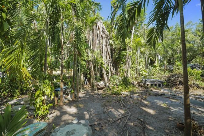 Palm Hurst, 3117  Indiana St  , Coconut Grove, FL - USA (photo 5)