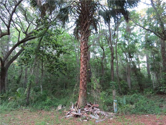 Residential Lots/Land - APALACHICOLA, FL (photo 3)