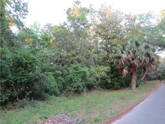 Residential Lots/Land - APALACHICOLA, FL (photo 4)