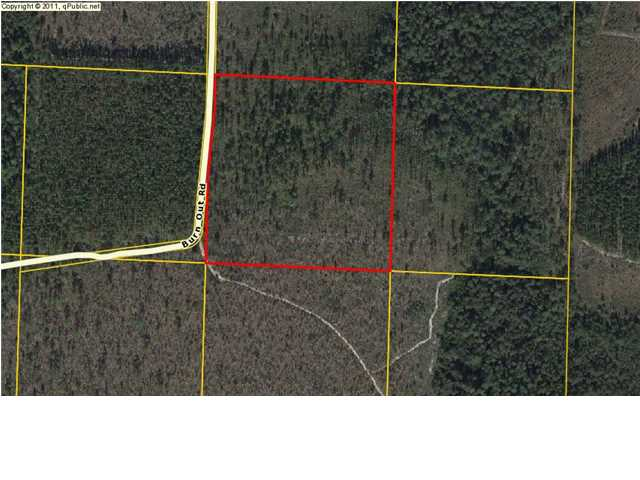 Residential Lots/Land - FOUNTAIN, FL (photo 3)