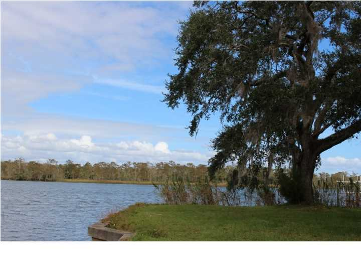 Detached Single Family - APALACHICOLA, FL (photo 4)