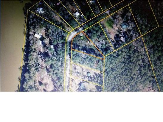 Residential Lots/Land - BRISTOL, FL (photo 1)