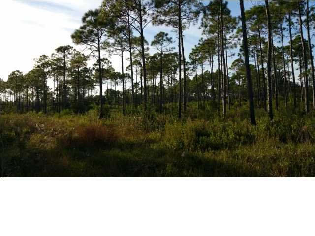 Residential Lots/Land - APALACHICOLA, FL (photo 5)