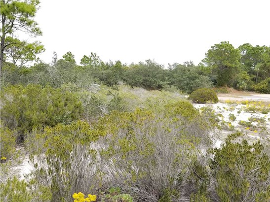 Residential Lots/Land - ST. GEORGE ISLAND, FL (photo 5)