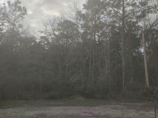 Residential Lots/Land - Sopchoppy, FL