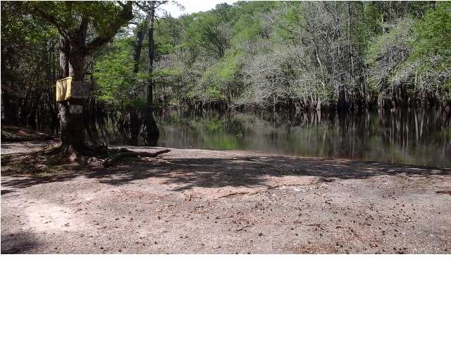 Residential Lots/Land - BRISTOL, FL (photo 4)
