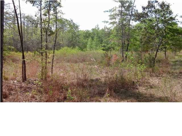 Residential Lots/Land - BRISTOL, FL (photo 3)