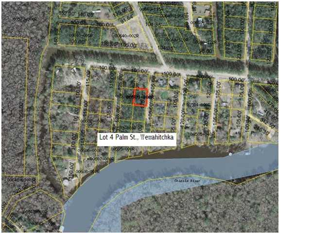 Residential Lots/Land - WEWAHITCHKA, FL (photo 1)