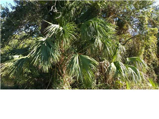 Residential Lots/Land - ST. GEORGE ISLAND, FL (photo 1)
