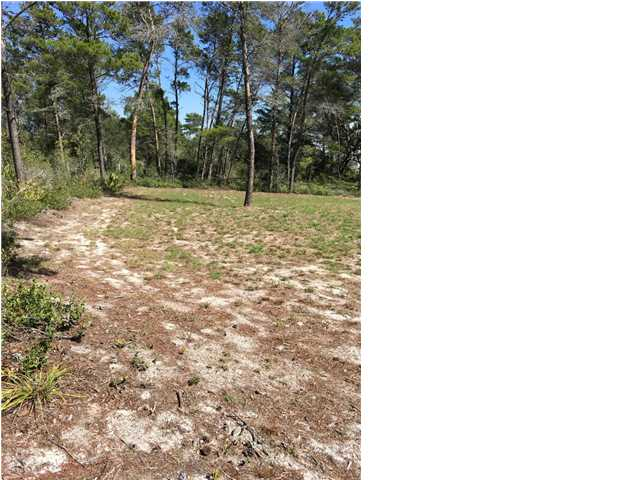 Residential Lots/Land - CARRABELLE, FL (photo 4)