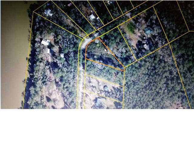 Residential Lots/Land - BRISTOL, FL (photo 1)