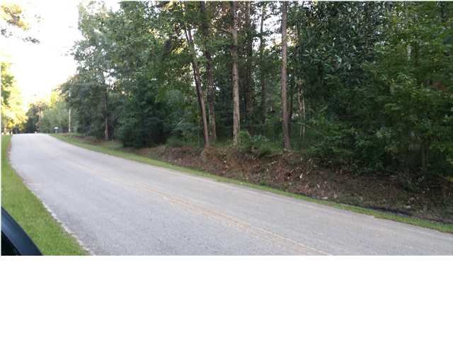 Residential Lots/Land - BRISTOL, FL (photo 2)