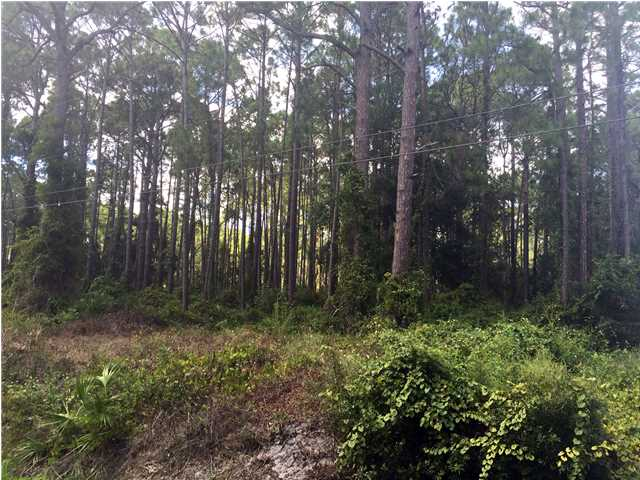 Residential Lots/Land - CARRABELLE, FL (photo 3)