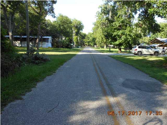 Residential Lots/Land - WEWAHITCHKA, FL (photo 4)