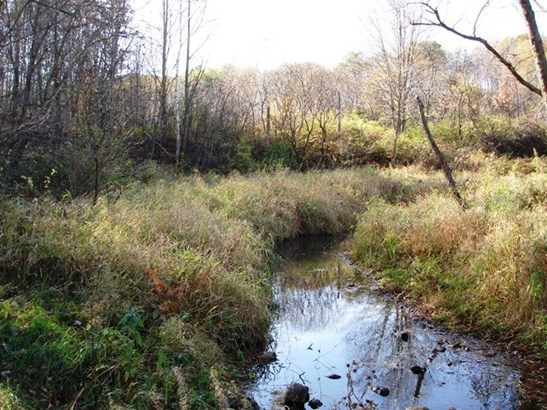 Rural - Reedsburg, WI (photo 2)