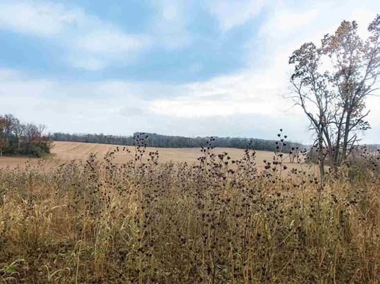 Rural - Cross Plains, WI (photo 4)