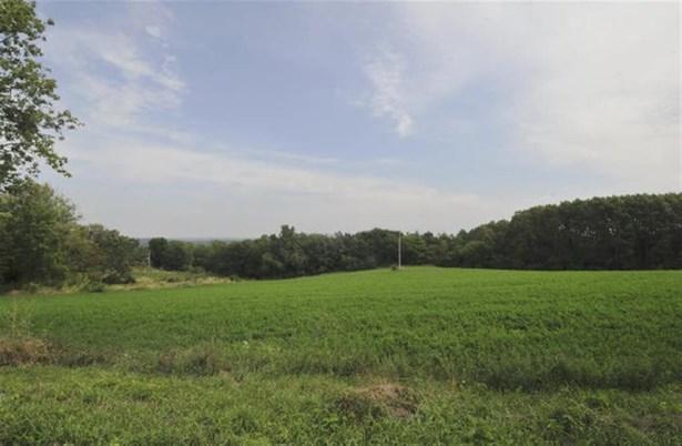 Rural - Black Earth, WI (photo 2)